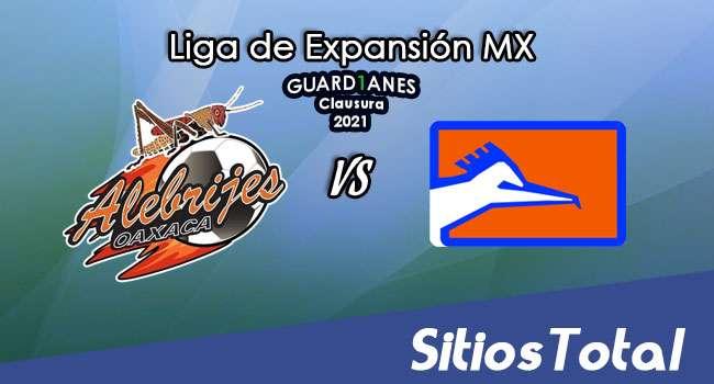 Alebrijes de Oaxaca vs Correcaminos en Vivo – Canal de TV, Fecha, Horario, MxM, Resultado – J7 de Guardianes Clausura 2021 de la  Liga de Expansión MX