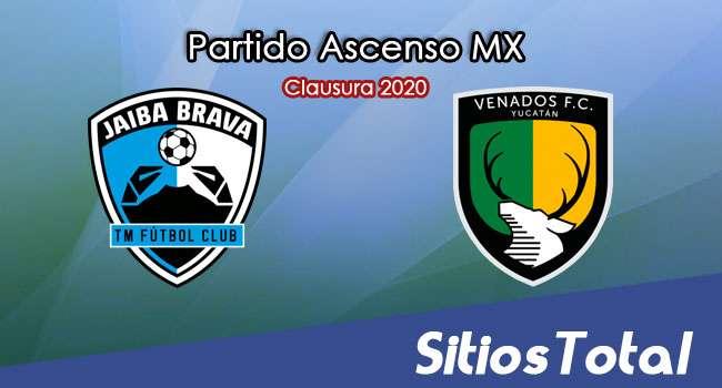Ver Tampico Madero vs Venados en Vivo – Ascenso MX en su Torneo de Clausura 2020