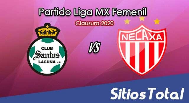 Ver Santos vs Necaxa en Vivo – Liga MX Femenil – Clausura 2020 – Lunes 13 de Enero del 2020