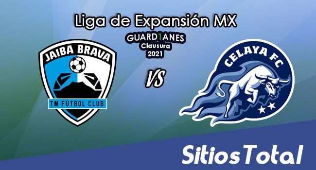 Tampico Madero vs Celaya en Vivo – Canal de TV, Fecha, Horario, MxM, Resultado – J9 de Guardianes Clausura 2021 de la  Liga de Expansión MX