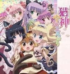 Nekogami Yaoyorozu Specials's Cover Image