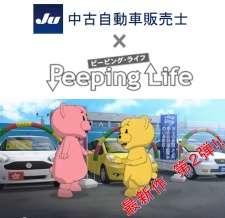 JU Chuuko Jidousha Hanbaishi x Peeping Life's Cover Image