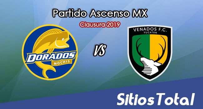 Ver Dorados de Sinaloa vs Venados en Vivo – Ascenso MX en su Torneo de Apertura 2019