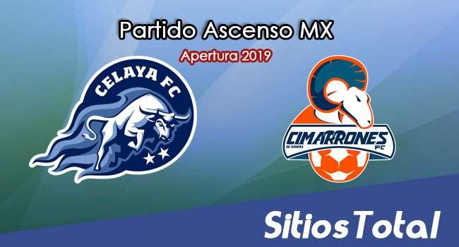Ver Celaya vs Cimarrones de Sonora en Vivo – Ascenso MX en su Torneo de Apertura 2019