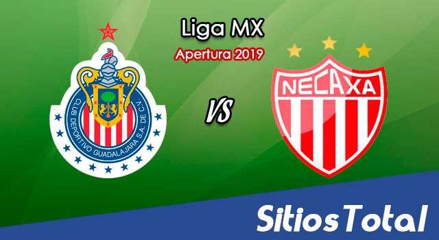 Ver Chivas vs Necaxa en Vivo – Apertura 2019 de la Liga MX