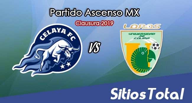 Ver Celaya vs Loros de la Universidad de Colima en Vivo – Ascenso MX en su Torneo de Apertura 2019