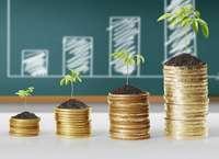 Инвестиции как доходный заработок в Интернете