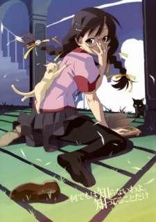 Bakemonogatari: Tsubasa Cat's Cover Image