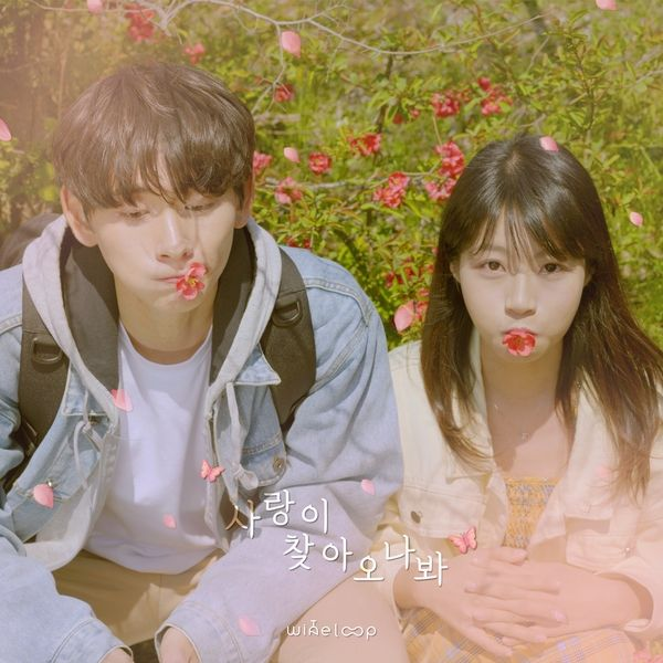 [Single] Wine Loop – Fall In Love (MP3)