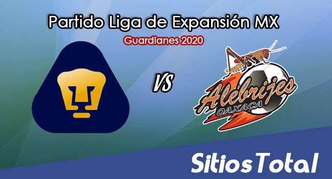 Pumas Tabasco vs Alebrijes de Oaxaca en Vivo – Liga de Expansión MX – Guardianes 2020 – Martes 27 de Octubre del 2020