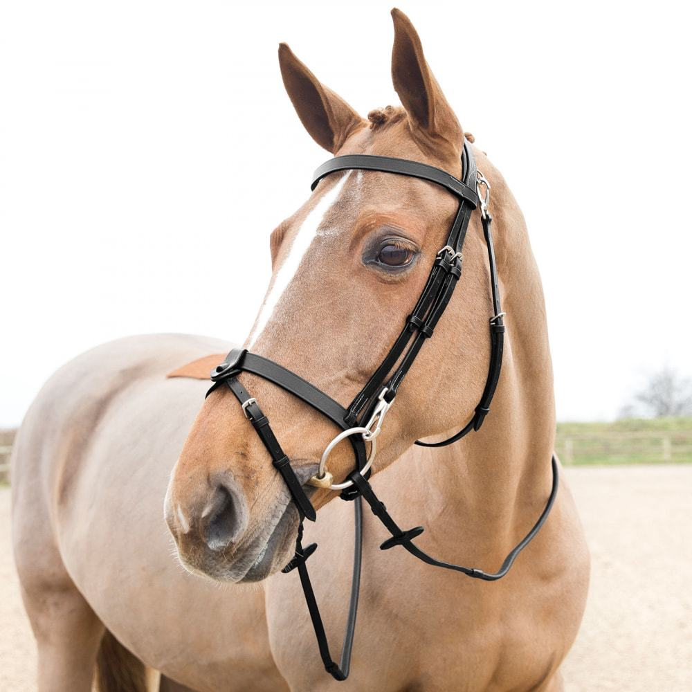 Horze-Supreme-Sparta-Hunter-Bridle-with-Wide-Browband-and-Detachable-Flash miniature 20
