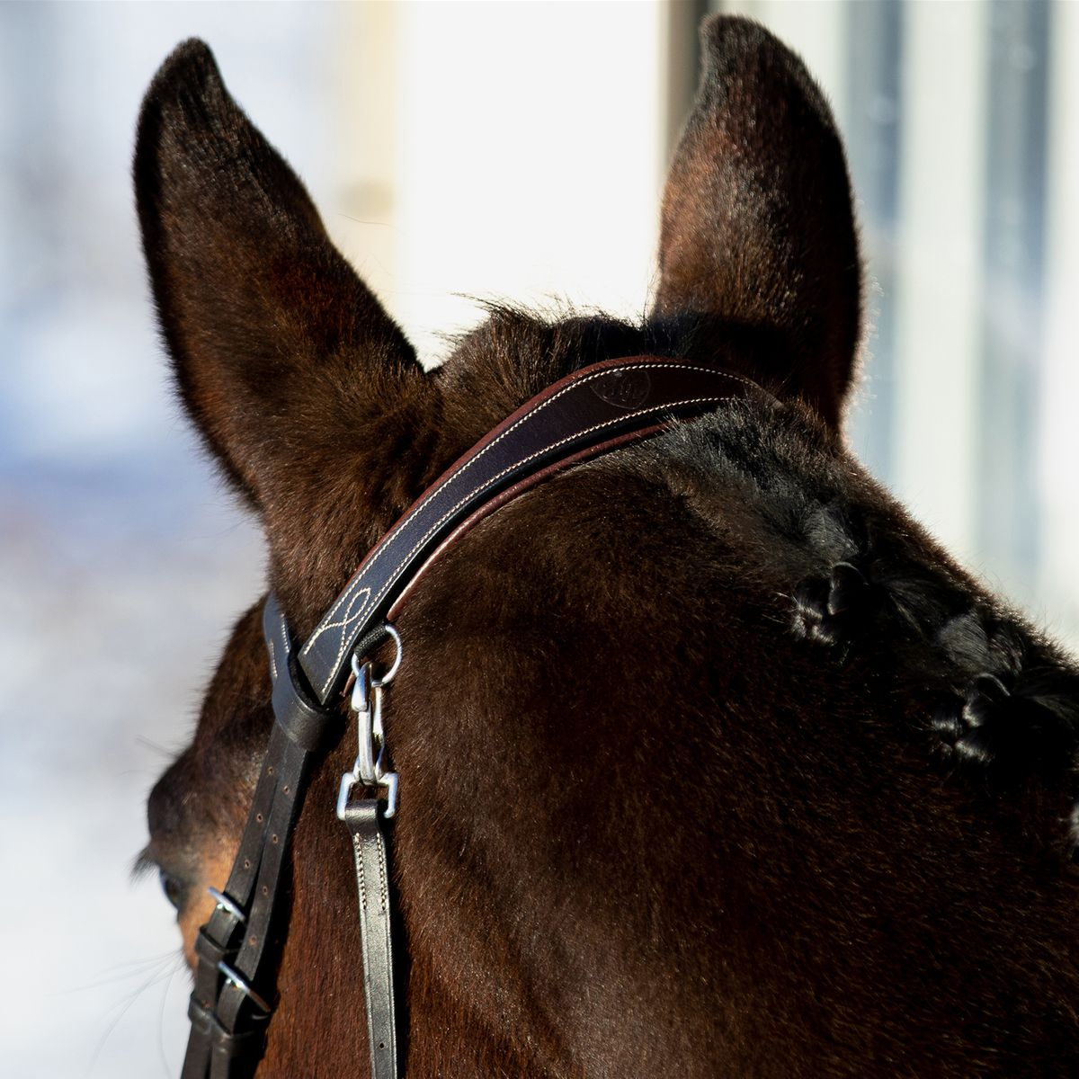 Horze-Supreme-Sparta-Hunter-Bridle-with-Wide-Browband-and-Detachable-Flash miniature 27
