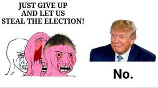 Let Us Steal The Election!