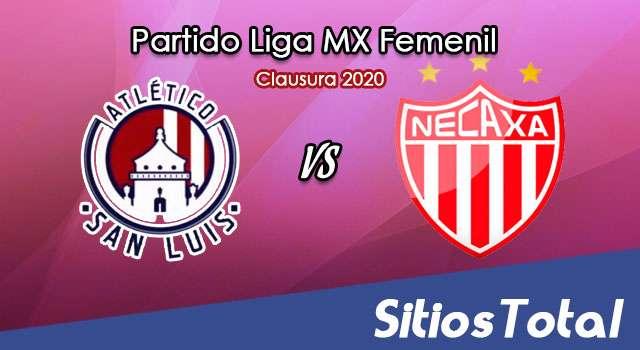 Ver Atlético San Luis vs Necaxa en Vivo – Liga MX Femenil – Clausura 2020 – Lunes 16 de Marzo del 2020