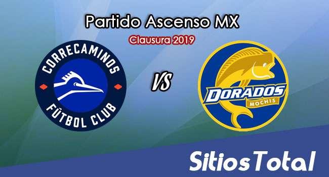 Ver Correcaminos vs Dorados de Sinaloa en Vivo – Ascenso MX en su Torneo de Apertura 2019