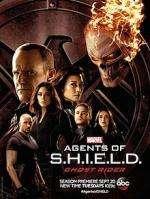 エージェント・オブ・シールド シーズン4(全22話)/Marvel's Agents of S.H.I.E.L.D. SEASON 4