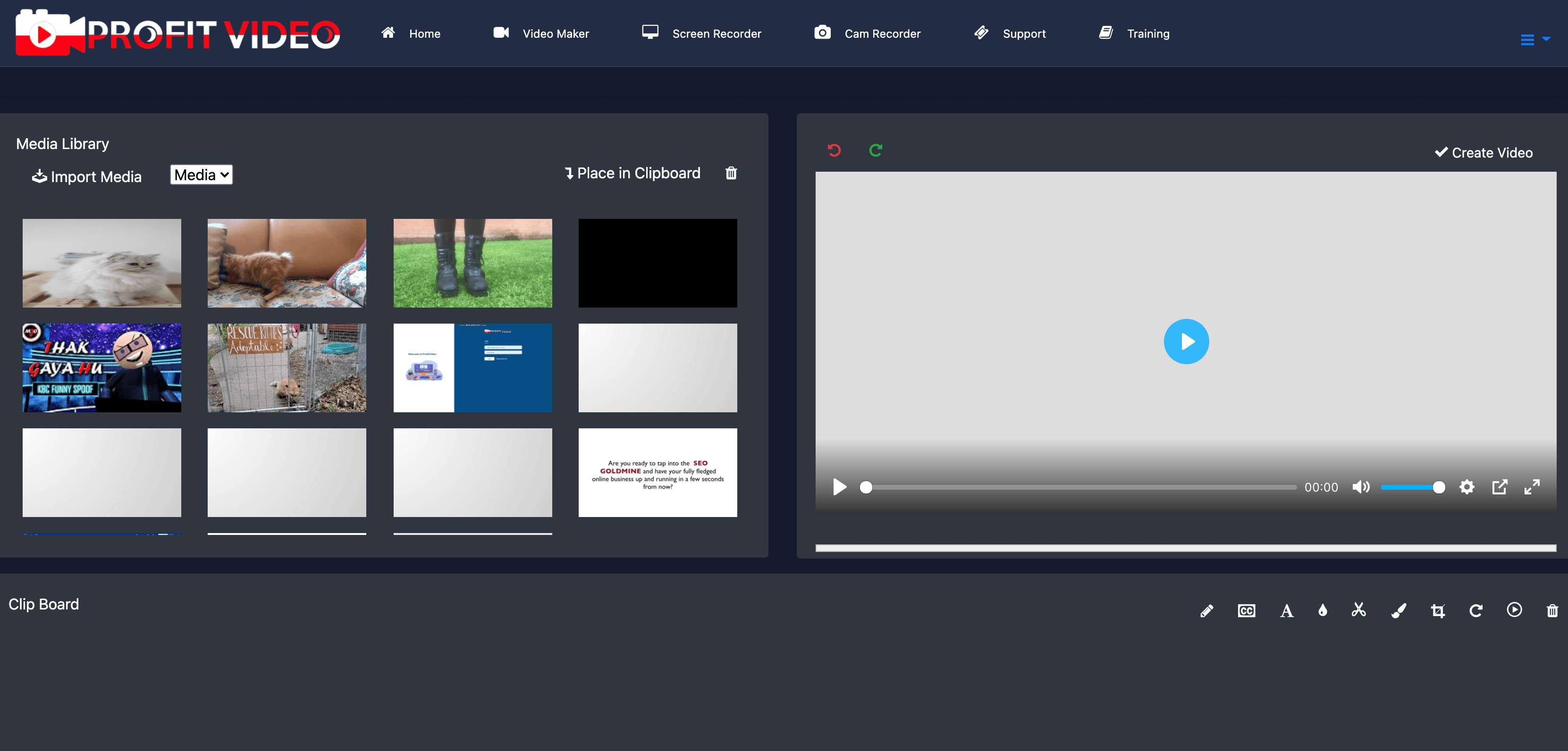 profit video review