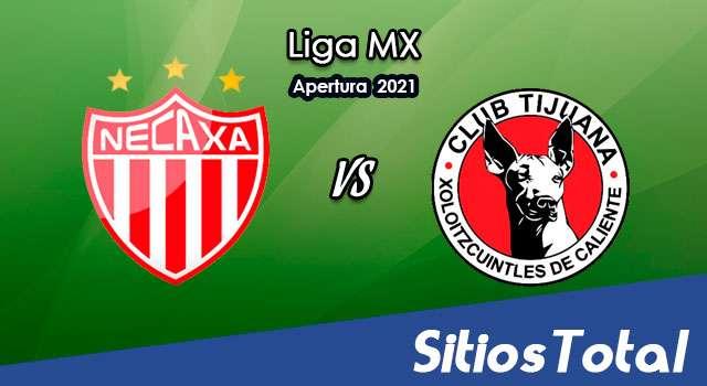 Necaxa vs Xolos Tijuana en Vivo – Canal de TV, Fecha, Horario, MxM, Resultado – J11 de Apertura 2021 de la Liga MX