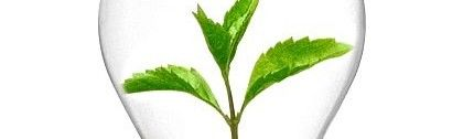 За и против еко/органичните продукти за почистване у дома?