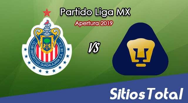 Ver Chivas vs Pumas en Vivo – Apertura 2019 de la Liga MX