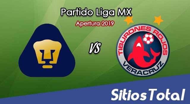 Ver Pumas vs Veracruz en Vivo – Apertura 2019 de la Liga MX