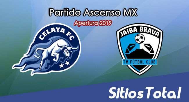 Ver Celaya vs Tampico Madero en Vivo – Cuartos de Final – Ascenso MX en su Torneo de Apertura 2019