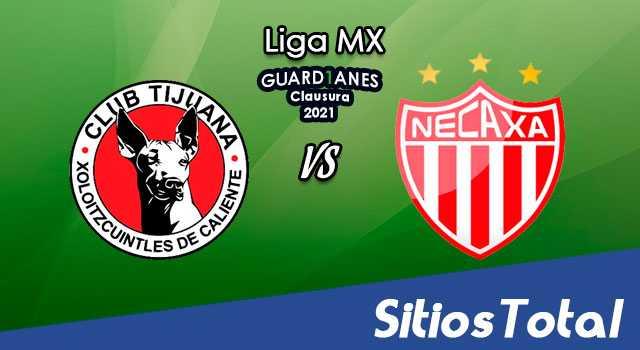 Xolos Tijuana vs Necaxa en Vivo – Canal de TV, Fecha, Horario, MxM, Resultado – J16 de Guardianes 2021 de la Liga MX