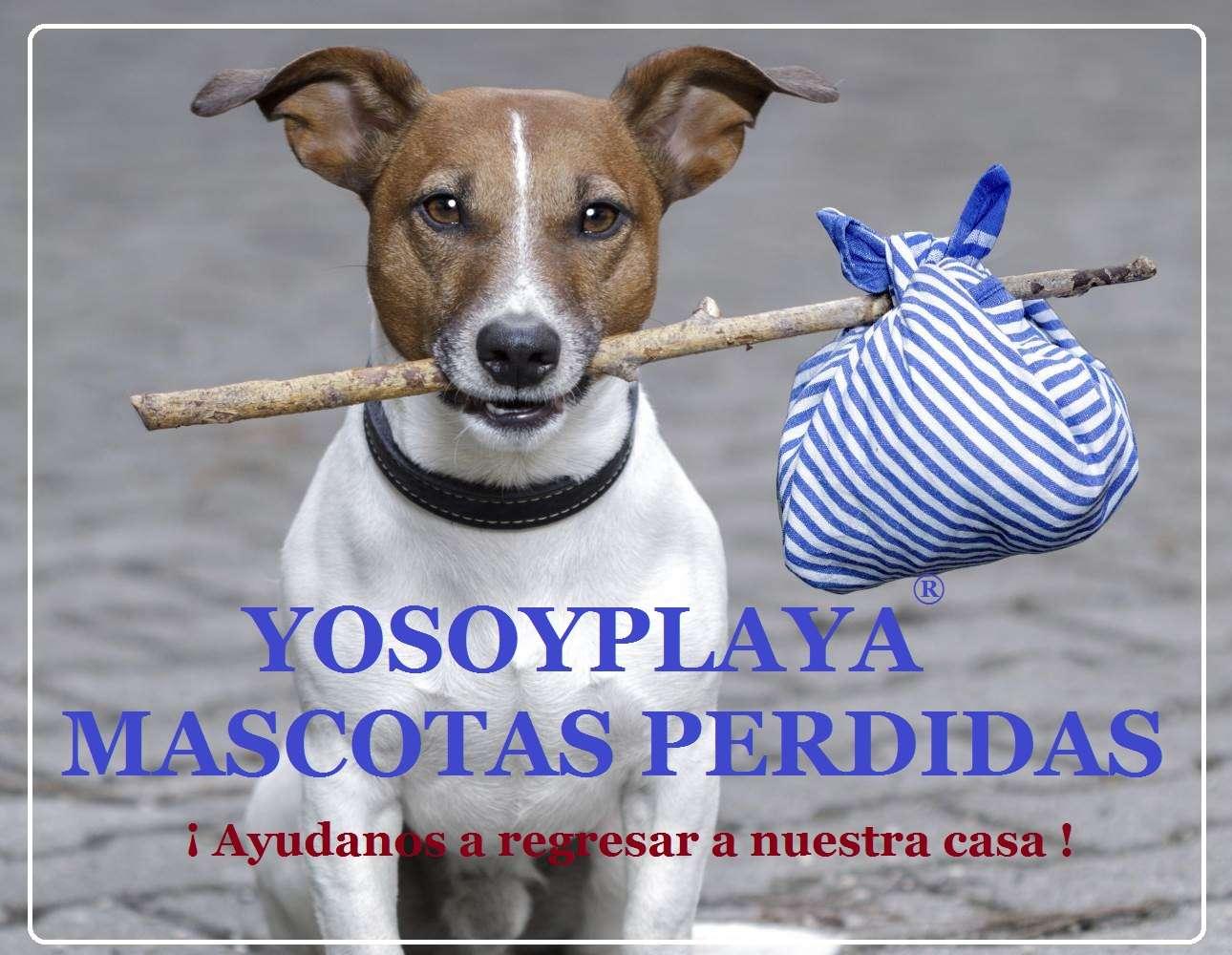 PLAYITA HERMOSA