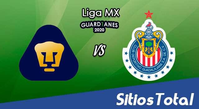Pumas vs Chivas en Vivo – Liga MX – Guardianes 2020 – Sábado 31 de Octubre del 2020