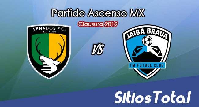 Ver Venados vs Tampico Madero en Vivo – Ascenso MX en su Torneo de Apertura 2019