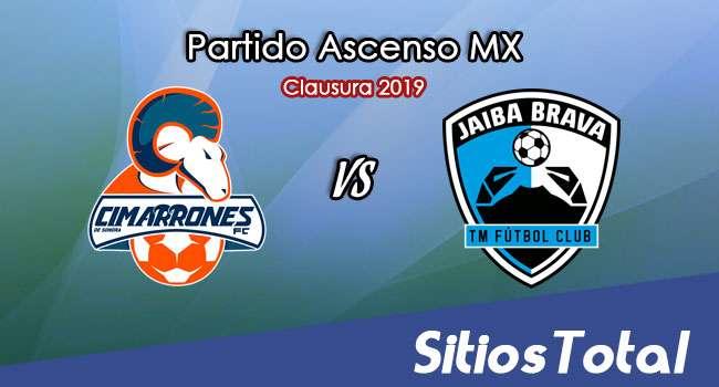 Ver Cimarrones de Sonora vs Tampico Madero en Vivo – Ascenso MX en su Torneo de Apertura 2019