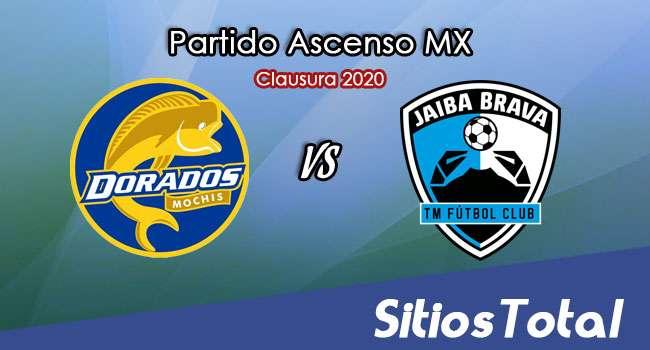Ver Dorados de Sinaloa vs Tampico Madero en Vivo – Ascenso MX en su Torneo de Clausura 2020