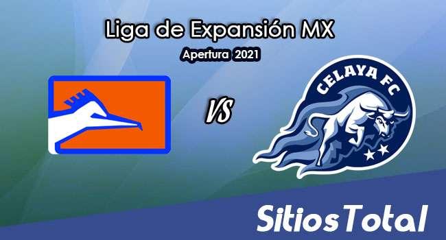 Correcaminos vs Celaya en Vivo – Canal de TV, Fecha, Horario, MxM, Resultado – J10 de Apertura 2021 de la  Liga de Expansión MX