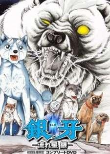Ginga Nagareboshi Gin Cover Image