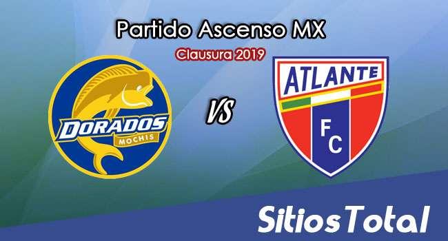 Ver Dorados de Sinaloa vs Atlante en Vivo – Ascenso MX en su Torneo de Apertura 2019