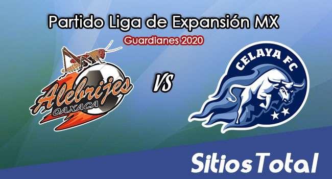 Alebrijes de Oaxaca vs Celaya en Vivo – Liga de Expansión MX – Guardianes 2020 – Jueves 22 de Octubre del 2020
