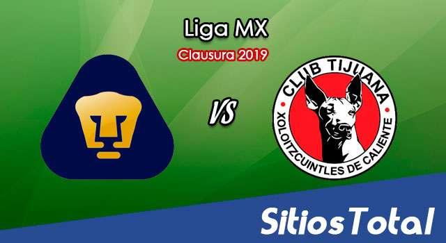 Ver Pumas vs Xolos Tijuana en Vivo – Clausura 2019 de la Liga MX