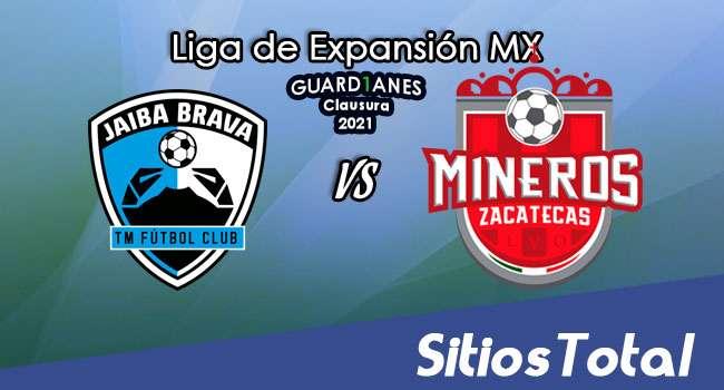 Tampico Madero vs Mineros de Zacatecas en Vivo – Canal de TV, Fecha, Horario, MxM, Resultado – J7 de Guardianes Clausura 2021 de la  Liga de Expansión MX