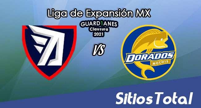 Tepatitlán FC vs Dorados de Sinaloa en Vivo – Canal de TV, Fecha, Horario, MxM, Resultado – Recalificación de Guardianes Clausura 2021 de la  Liga de Expansión MX