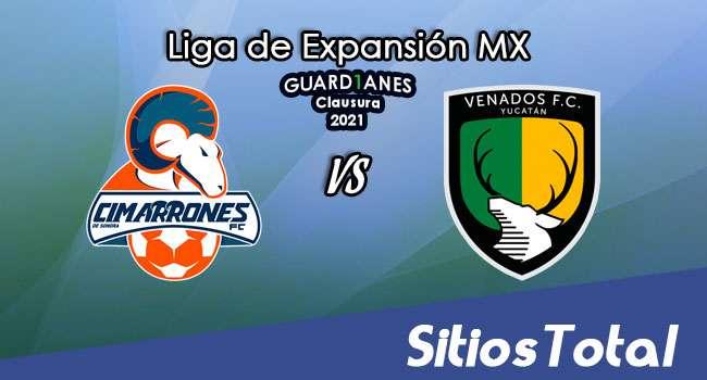 Cimarrones de Sonora vs Venados FC en Vivo – Canal de TV, Fecha, Horario, MxM, Resultado – Recalificación de Guardianes Clausura 2021 de la  Liga de Expansión MX