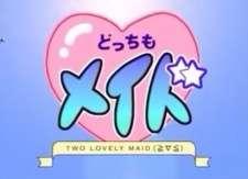Docchi mo Maid's Cover Image