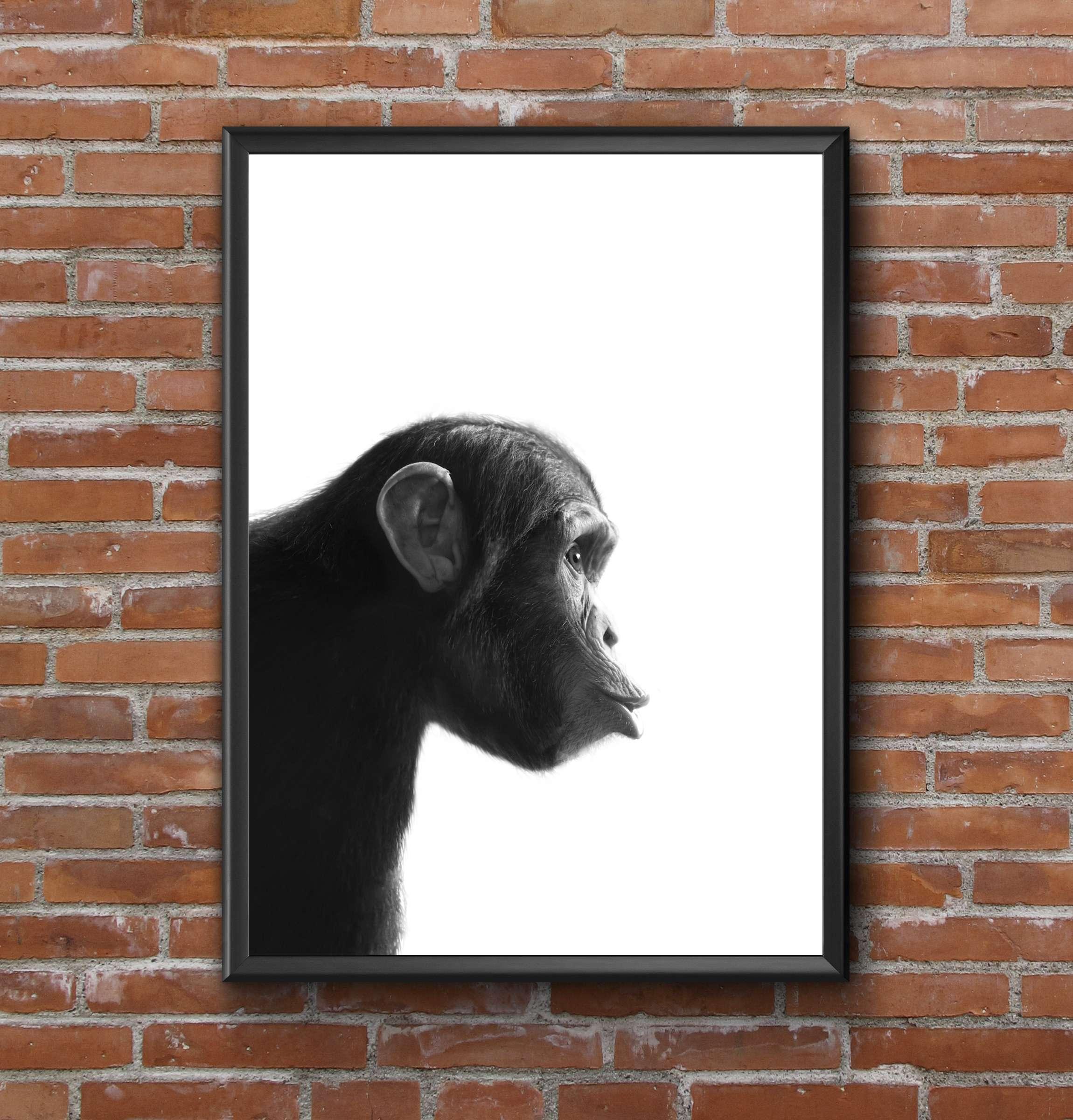 FUNNY CHIMP  NORDIC MODERN SCANDINAVIAN  ANIMAL A4 ART PRINT