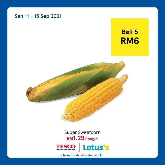 Tesco Catalogue(11 September)