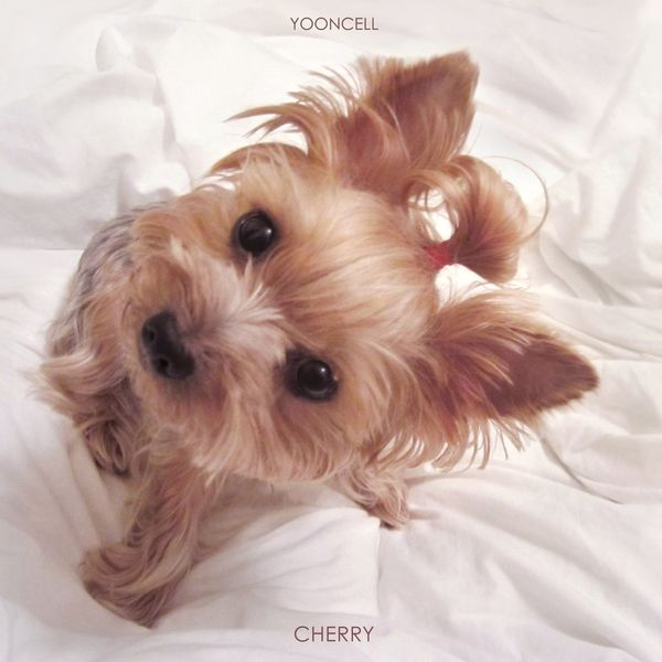 YOONCELL – Cherry MP3