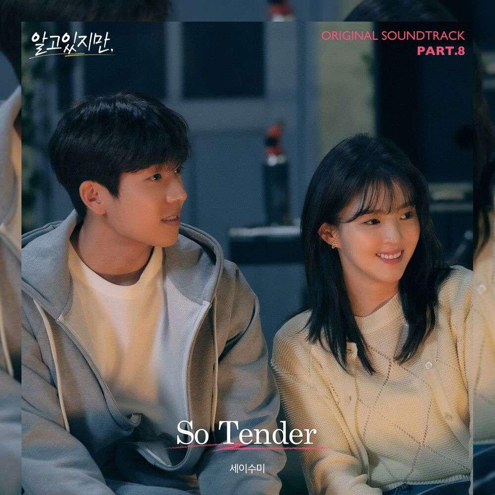세이수미 (Say Sue Me) – So Tender / Nevertheless OST Part.8 MP3