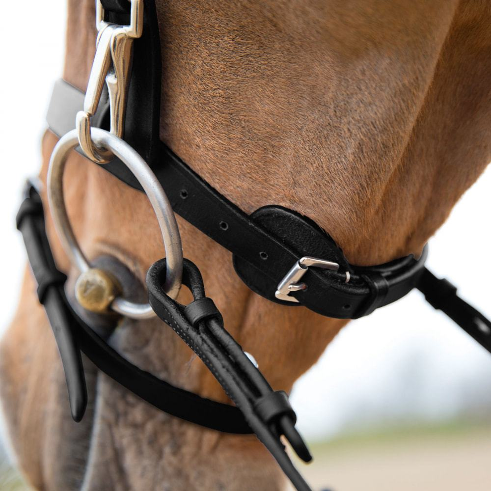 Horze-Supreme-Sparta-Hunter-Bridle-with-Wide-Browband-and-Detachable-Flash miniature 22