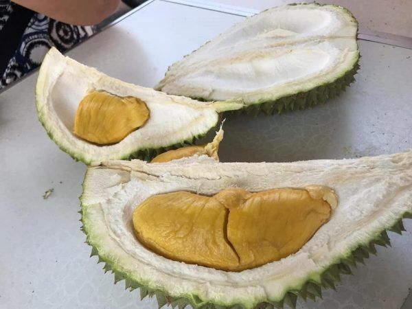 Durian Delivery Singapore