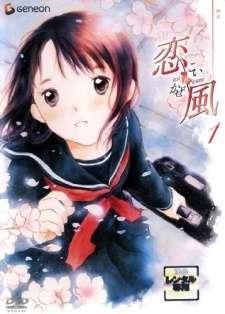 Koi Kaze's Cover Image