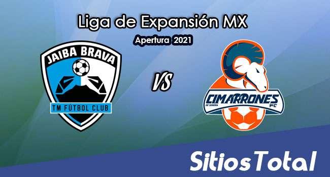 Tampico Madero vs Cimarrones de Sonora en Vivo – Canal de TV, Fecha, Horario, MxM, Resultado – J9 de Guardianes Apertura 2021 de la  Liga de Expansión MX