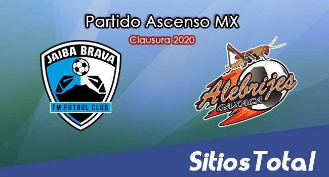 Ver Tampico Madero vs Alebrijes de Oaxaca en Vivo – Ascenso MX en su Torneo de Clausura 2020